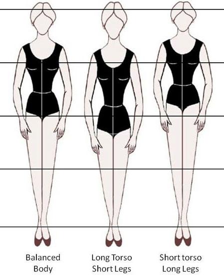 vertical body type