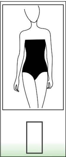 rectangle shaped body type